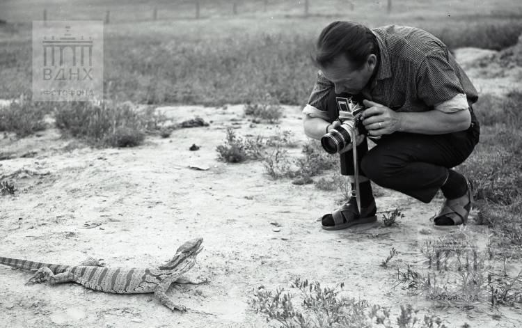 Фотограф в процессе съемки
